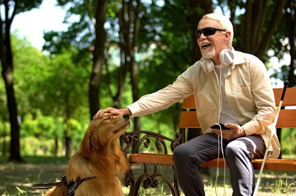 Guiar a los ciegos o a los discapacitados visuales