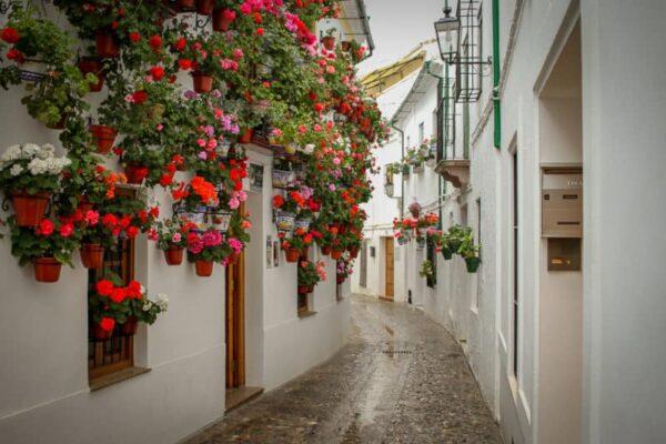 Los 8 mejores consejos para visitar Andalucía